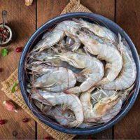 میگو متوسط جنوب برای فروش در وبسایت ماهی مشتا