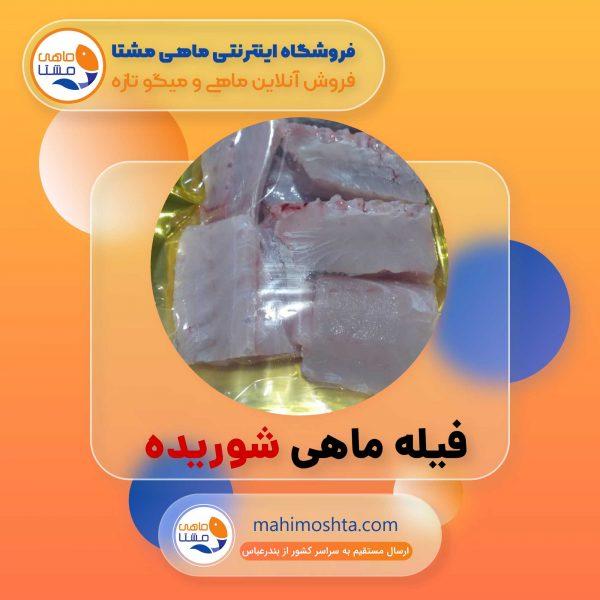محصول ماهی مشتا