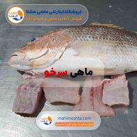 ماهی سرخو تازه جنوب (حمرو)