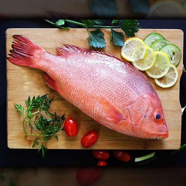ماهی چمن پاک نشده برای فروش در وبسایت ماهی مشتا