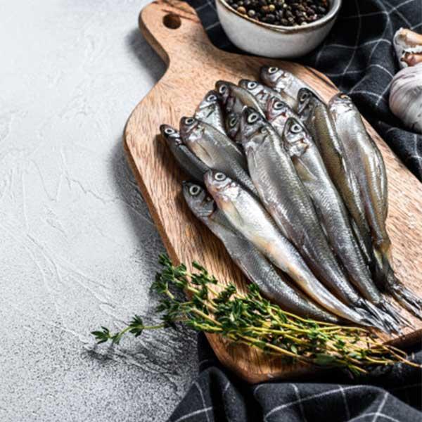 ماهی شورت پاک نشده برای فروش در وبسایت ماهی مشتا