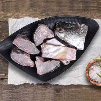 ماهی شانک تازه جنوب - %d9%82%d8%b7%d8%b9%d9%87-%d8%b4%d8%af%d9%87