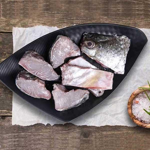 ماهی شانک قطعه شده برای فروش در وبسایت ماهی مشتا