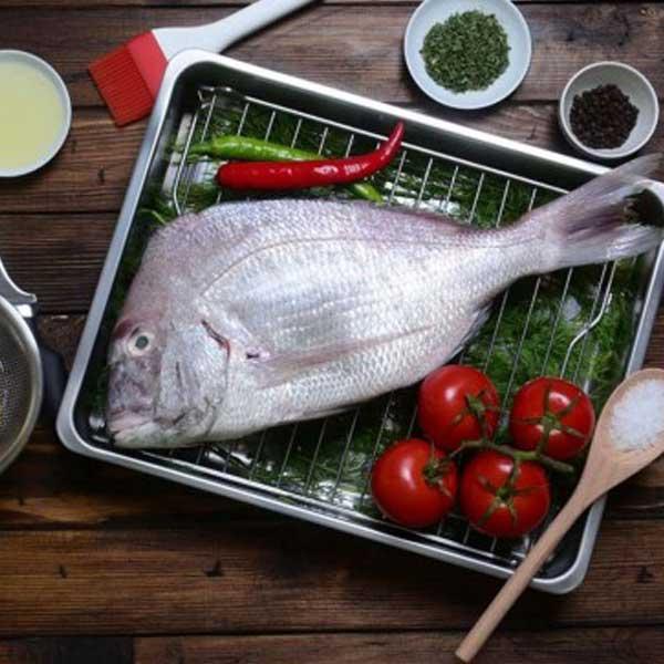 ماهی شانک پاک نشده برای فروش در وبسایت ماهی مشتا