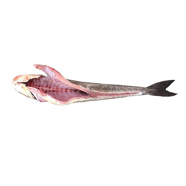ماهی سوکلا پاک شده برای فروش در وبسایت ماهی مشتا