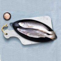 ماهی شوریده تازه جنوب - %d9%be%d8%a7%da%a9-%d9%86%d8%b4%d8%af%d9%87
