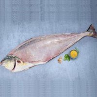 ماهی مقوا سلیمانی تازه جنوب (سارم) - %d9%be%d8%a7%da%a9-%d8%b4%d8%af%d9%87