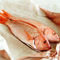 ماهی سرخو تازه جنوب (حمرو) - %d9%be%d8%a7%da%a9-%d9%86%d8%b4%d8%af%d9%87