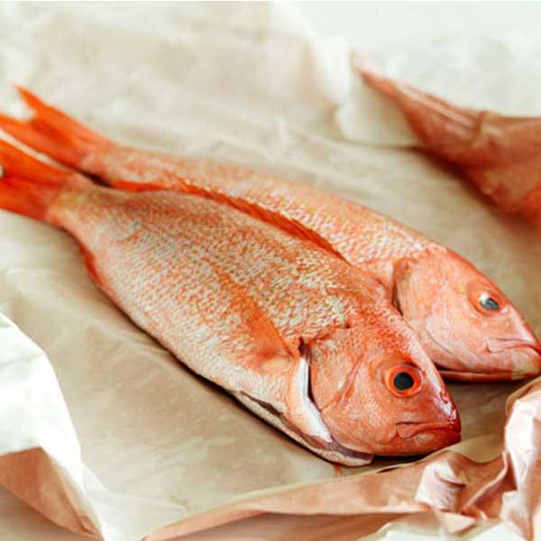 ماهی حمرو پاک نشده برای فروش در وبسایت ماهی مشتا