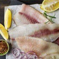 ماهی صبیتی تازه جنوب - %d9%81%db%8c%d9%84%d9%87-%d8%b4%d8%af%d9%87