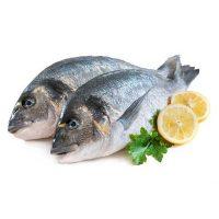 ماهی صبیتی تازه جنوب - %d9%be%d8%a7%da%a9-%d9%86%d8%b4%d8%af%d9%87