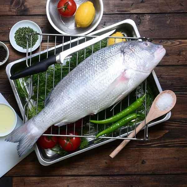 ماهی صبیتی پاک نشده برای فروش در وبسایت ماهی مشتا