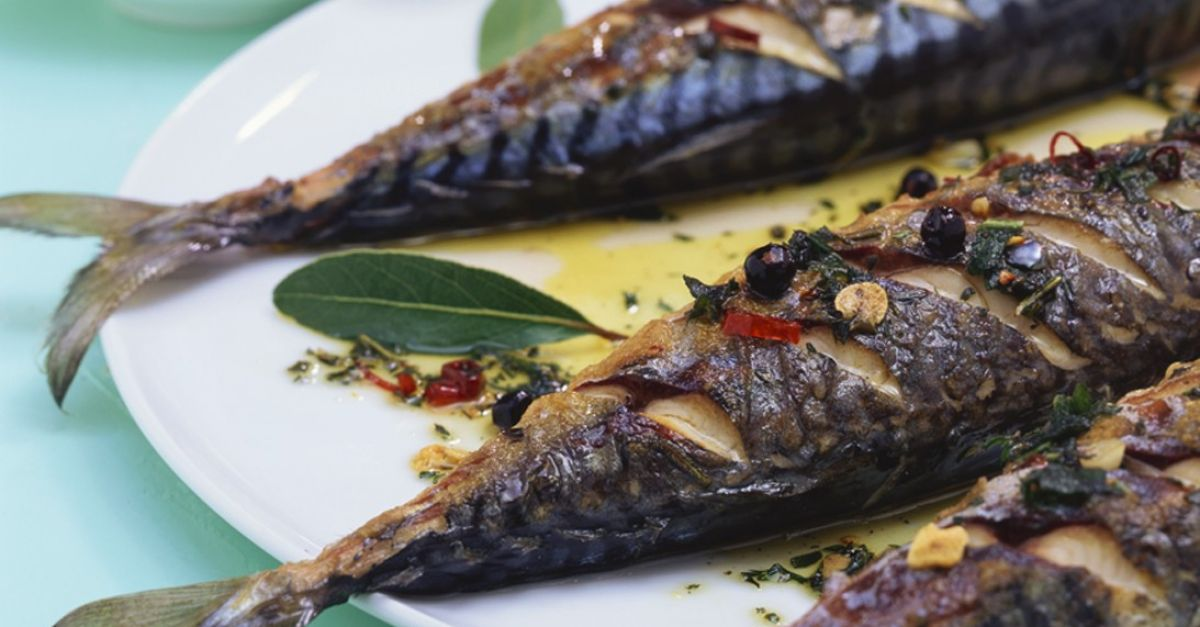 کباب ماهی