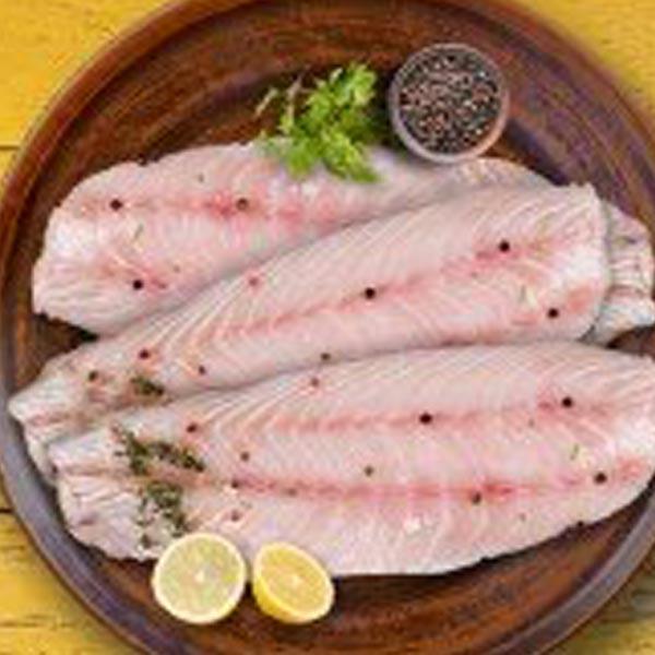 ماهی گالیت فیله شده برای فروش در وبسایت ماهی مشتا
