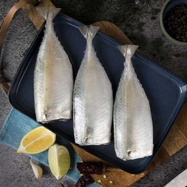 ماهی طلال پاک شده برای فروش در وبسایت ماهی مشتا