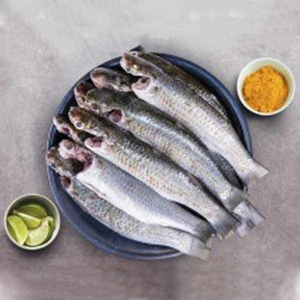 ماهی بیاه پاک شده برای فروش در وبسایت ماهی مشتا