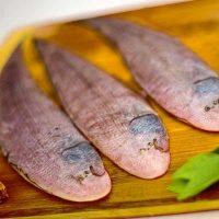 ماهی کفشک زبان گاوی برای فروش در وبسایت ماهی مشتا