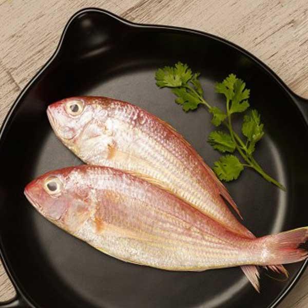ماهی سلطان ابراهیم پاک نشده برای فروش در وبسایت ماهی مشتا