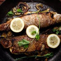 ماهی شوریده سرخ شده برای بخش دستور پخت سایت ماهی مشتا
