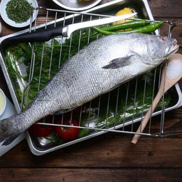 ماهی میش پاک نشده برای فروش در وبسایت ماهی مشتا