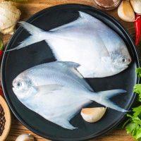 ماهی زبیدی پاک نشده متوسط برای فروش در وبسایت ماهی مشتا