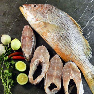 نحوه خرید ماهی تازه جنوب