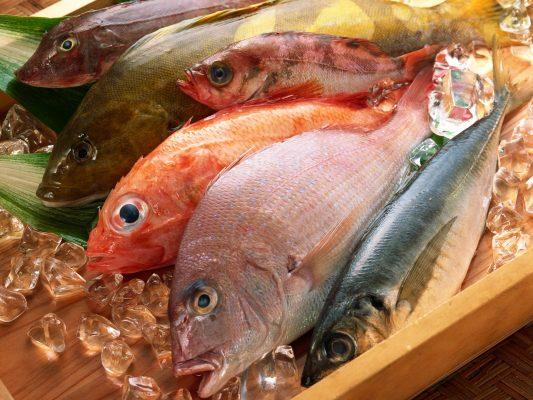 مزایای خرید آنلاین ماهی تازه جنوب