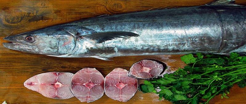 خواص ماهی شیر