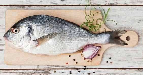 مزایای عرضه و خرید ماهی زنده