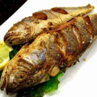 پخت ماهی شوریده در فر به روشهای مختلف
