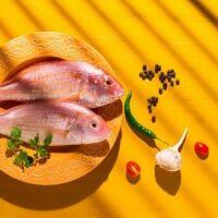 تشخیص ماهی و میگو تازه جنوب