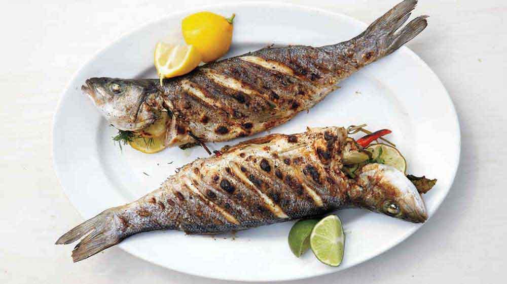 ماهی راشگو شکم پر