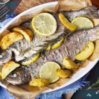 طرز پخت ماهی راشگو تازه جنوب