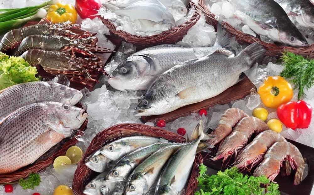 ماهیهای خوشمزه جنوب