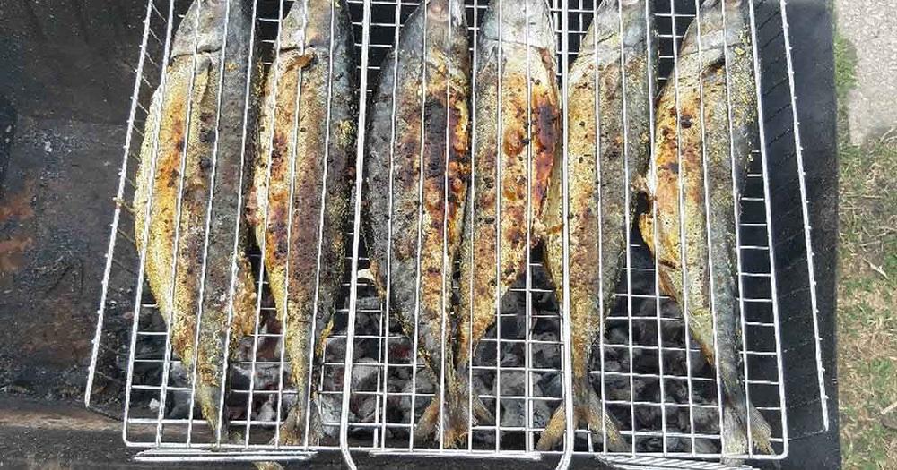 ماهی سفید روی زغال