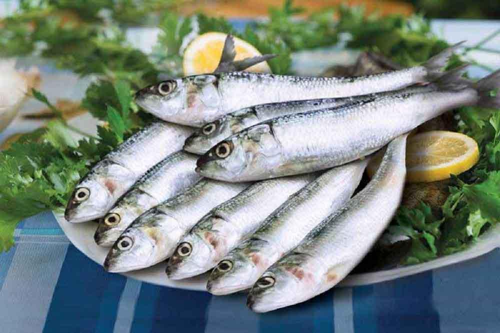 روش طبخ ماهی ساردین