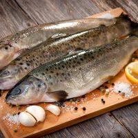 طرز تهیه ماهی قزل آلا رستورانی با بهترین روشها