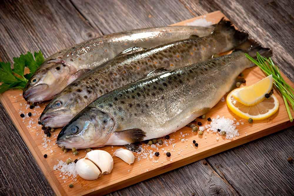 تهیه ماهی قزل آلا به روش رستورانی
